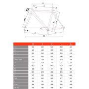 vigorelli-geometry
